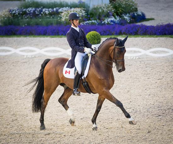Canadian Dressage rider Chris von Martels & Divertimento at 2016 Aachen CDI4 Grand Prix